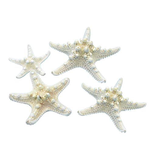 Amosfun 4pcs Natural Starfish for Crafts Shell Conch Wall Landscaping Decoration Platform Wedding Aquarium Decoration (5-8cm)