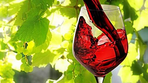 Olieverfschilderij digitaal om zelf te maken rode wijn in een glas geschenk creatief beschilderd huis decoratie handgeschilderd olieverfschilderij op doek 40 x 50 cm