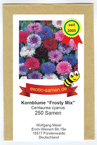 Centaurea cyanus - Bienenweide - Kornblumen-Mix - 5 Farben - 250 Samen