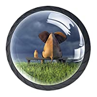 キッチンキャビネットノブ4個セット-プルノブ引き出しとドレッサーハンドル- 緑の芝生のフィールドで黄色い犬と象