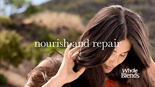 Beauty Shopping Garnier Hair Care Whole Blends Honey Treasures Repairing Shampoo, Conditioner, and