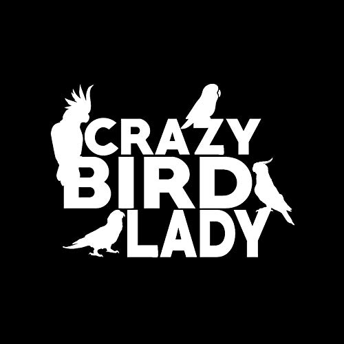 Vinilo Coche Exterior 15.7cm * 11.1cm Cartoon Crazy Bird Lady Cockatoo Parrot Conure Decal Vinyl Car Sticker Negro Silver Vinilo Coche Exterior (Color Name : Silver)