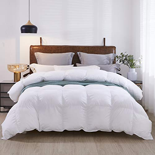 Elcherthe Goose Down Comforter All Season Down Feather Duvet Insert Queen Size Down Quilt, 100% Cotton Fabric with 8 Corner Tabs 700+ Fill Power (90x90 inches)