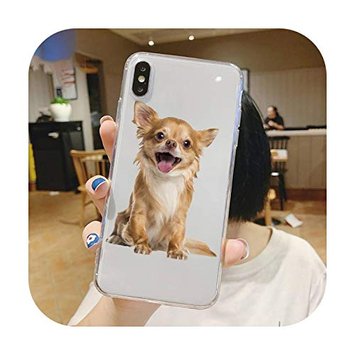 Chihuahua - Carcasa para iPhone 5, 5S, 5C, SE, 6S, 7, 8, 11, 12 Plus, Mini, XS, XS, Pro, max-a7, para iPhone 11, diseño de perro de Chihuahua