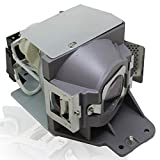 Originale LampeVidéoprojecteurP-VIP 240/0.8 E20.9N avec BenQ W1070 W1070+ W1080 W1080ST...