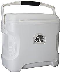 top 10 30 quart cooler Igloo 30 Quart Marine Super Cooler