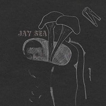Jay Sea