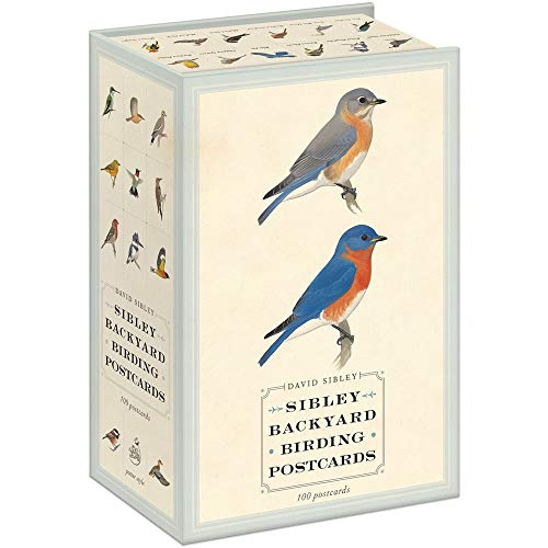Compare Textbook Prices for Sibley Backyard Birding Postcards: 100 Postcards Sibley Birds Pos Edition ISBN 9780770433963 by Sibley, David,Sibley, David Allen