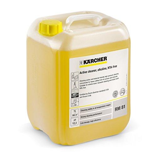 Kärcher 6.295-557 Aktivwäsche RM 81, 20 Liter