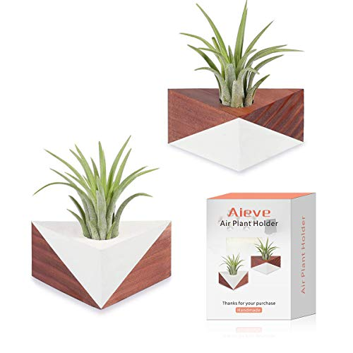 Air Plant Holder, 2 Pack Tillandsia Holder Triangle Geometric Planter Air Plant Holders Container Tabletop Display Stand Vase Pot with Magnet for Hanging Small Air Plants Indoor Wall Home Decor