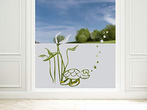 GRAZDesign Sichtschutzfolie Bad Schildkröte Unterwasserwelt, Fensterfolie als Sichtschutz, Dusche Glastür, 57cm hoch / 80x57cm
