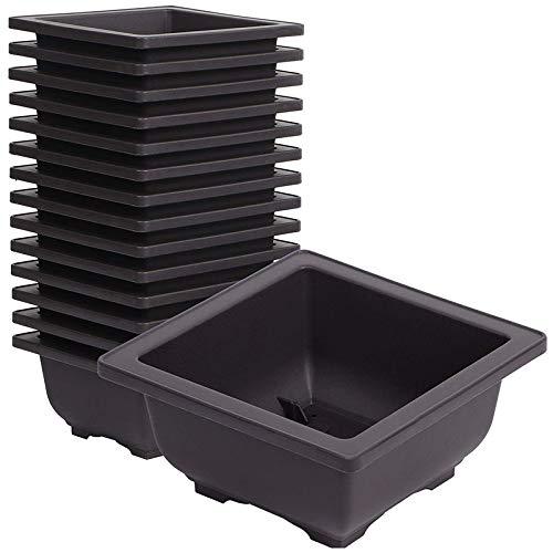 Adanse 15 vasi quadrati in plastica per bonsai, da 4,7 pollici, per giardino, interni, decorazione della casa