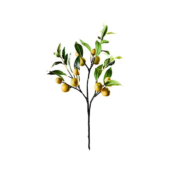 XLYS Artificial Lemon Branch, Simulation Lemon Fruits Decoration with Green Leaves, Fake Lemon Plant Flower Branch Photography Props for Home Wedding Party Decoration