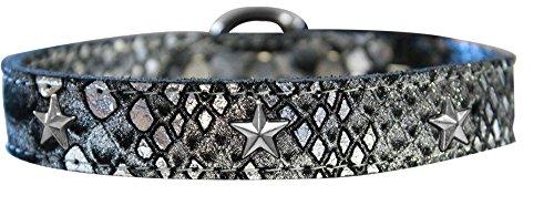 Mirage Pet Products 83-98 SV24 Silver Star Widget Dragon Skin Hundehalsband, Echtleder, Größe 24, Silber