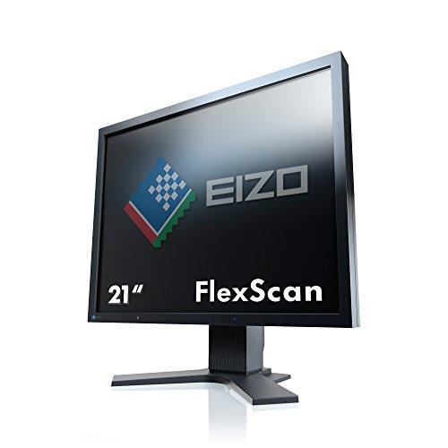 """Eizo S2133-BK - Monitor de 21.3"""" LCD (20 ms, 420 CD/m2), Color Negro"""