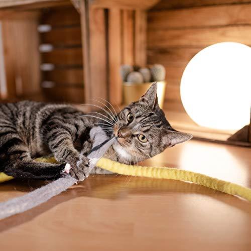 CanadianCat Company ® | Katzenspielzeug aus Filz | Snake - dunkelgrau | Filzschlange