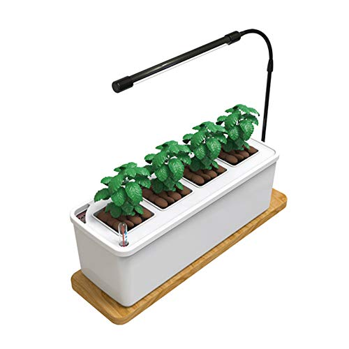 TOPQSC Idroponica da interno Giardino di erbe aromatiche Vaso da fiori Vaso da fiori Vaso da fiori Smart LED Vaso da fiori idroponico da interno Starter Kit da giardino con luce LED