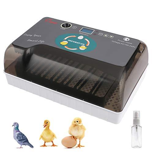 Sailnovo Incubadora Automática de Huevos, Incubadora Digital Inteligente de 12 Huevos con Pantalla de Temperatura y Humedad