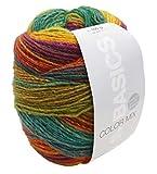 Lana Grossa Basics Color Mix 605 - Gomitolo di lana con istruzioni per lavorare a maglia, spessore 4,5-5 mm, 100 g, ca. 350 m