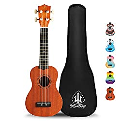 30 best ukulele reviews 2018 best ukulele brands best ukeleles