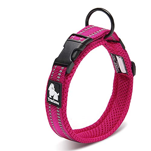 Chai's Choice Best Padded Comfort Cushion Dog Collar for Small, Medium, and Large Dogs and Pets. Perfect Match Front Range Harness Leash. (Large, Fuchsia)