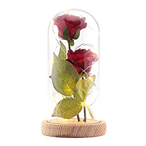 Silk Flower Arrangements CAMPSLE Beauty and The Beast Rose, Warm White Artificial Silk Rose LED Light with Glass Lampshade and Wooden Base for Valentines Day Wedding Anniversary Mothers Day Birthday Gift