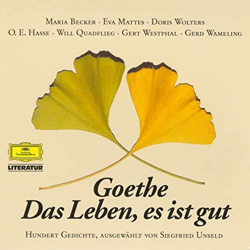 Goethe. Das Leben, es ist gut Titelbild