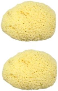 ユタカ 天然海綿スポンジ x2個セット