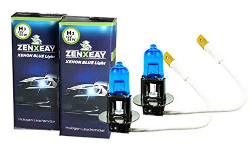 H3 Xenon Optik Lampe, Halogen Leuchtmittel Set, 12V 55W, Super White Birne, 2 Stück, für diverse Fahrzeuge
