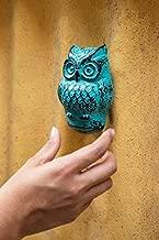 Casa Décor Cast Iron Victorian Style Owl Door Knocker (5X3X2-inch, Rustic Light Blue)