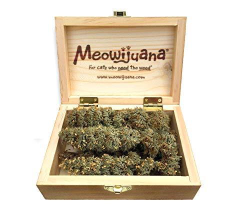 Meowijuana Cigar Box von Buds