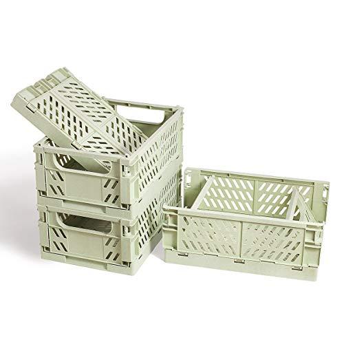 BAREGO Caja de Almacenamiento Plegable de plástico,Caja plastico Plegable Fruta,Cesta Plegable Camping plastico,Cocina, Juguetes de Dormitorio, Ropa, Almacenamiento de Archivos(Verde)