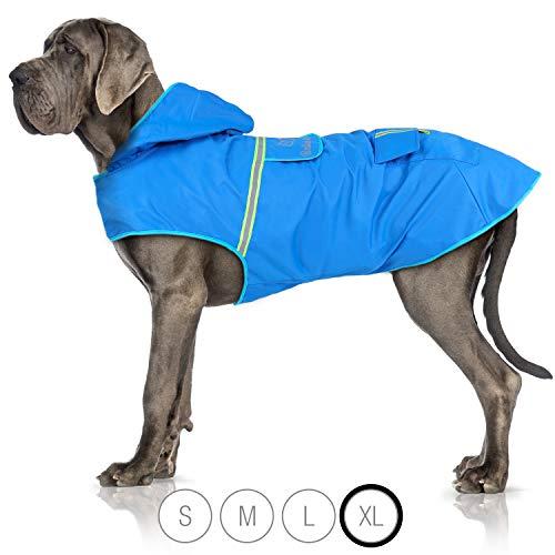 Bella & Balu Hunderegenmantel – Wasserdichter Hundemantel mit Kapuze und Reflektoren für trockene, sichere Gassigänge, den Hundespielplatz und den Urlaub mit Hund (XL | Blau)