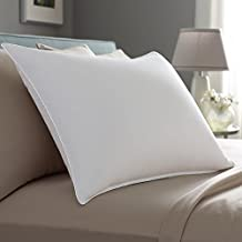 Pacific Coast Touch of Down King Size 2-Pillow Set with 2 King Size Pillowtex Pillow Protectors
