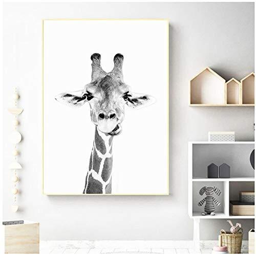 sjkkad giraffe muurkunst wilde dieren poster afdrukken canvas schilderij dierentuin decoratie plezier dier zwart-wit fotografie afbeelding kleuterschool -50 x 70 cm geen lijst