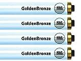 Wolff System GoldenBronze F73T12 HO 100W RDC Tanning Bulbs - Intense Bronze (32)