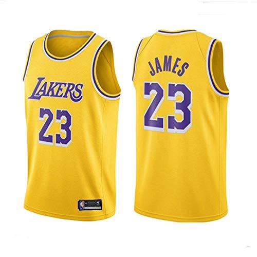 Camiseta De Baloncesto Para Hombre-NBA Lakers # 23 Lebron James (Lebron James) Camiseta De Baloncesto De Malla Para Fan Edition, Los FanáTicos Leales No Deben Perderse