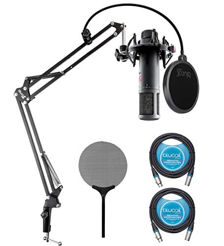 sE Electronics sE2200 Large-Diaphragm Condenser Microphone for Vocals, Acoustic/Electric Guitars, Drum Overheads Bundle with Blucoil Boom Arm Plus Pop Filter, and 2-Pack of 10-FT Balanced XLR Cables