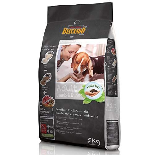 Belcando Adult Lamb & Rice [5 kg] Hundefutter | Trockenfutter für empfindliche Hunde | Alleinfuttermittel für ausgewachsene Hunde ab 1 Jahr