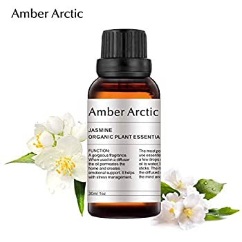 AMBER ARCTIC Jasmine Essential Oil for Diffuser  30ML  100% Pure Fresh Organic Plant Therapy Jasmine Oil
