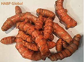 USDA Organic Turmeric Whole Raw Root