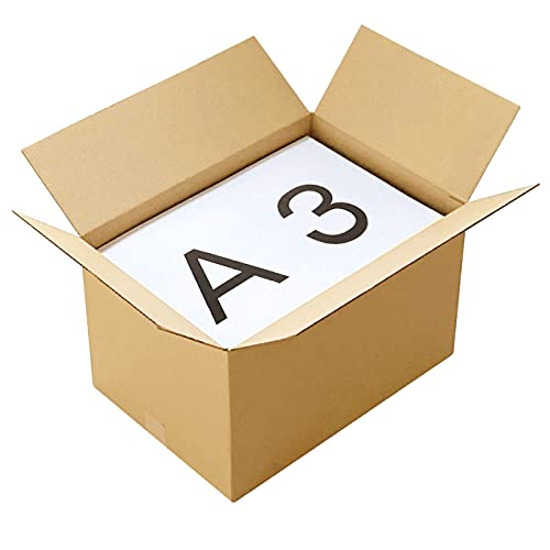 アースダンボール ダンボール 段ボール A3 120サイズ 引越 強化材質 宅配 発送 10枚【450×310×276mm】【0263】