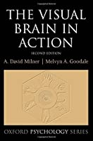 The Visual Brain in Action (Oxford Psychology Series)