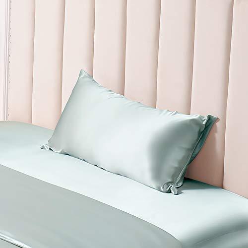 THXSILK 100% Silk Pillowcase for Hair and Skin Luxury 25 Momme Mulberry Silk, Pillow Cases with Hidden Zipper (Queen, Light Blue)