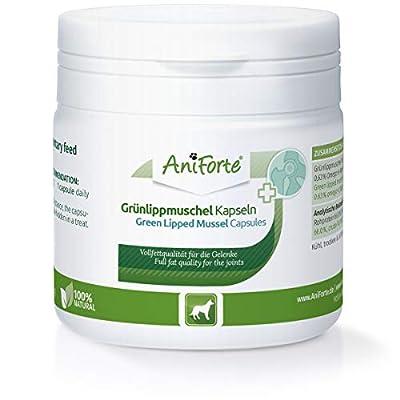 AniForte Grünlippmuschel Kapseln für Hunde 100 Stück - Gelenktabletten für Hunde in Vollfettqualität 10,2%, Glycosaminoglycane 3,3%, Tabs mit Grünlippmuschelpulver, unterstützt Gelenkfunktionen