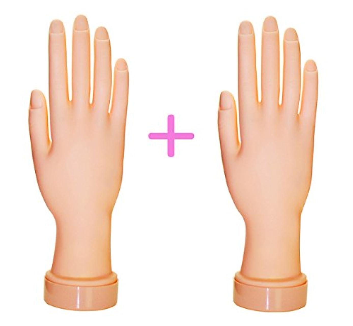 サドルパスポート密ネイル練習用ハンドマネキン2個(右手/左手)/チップ差し込み式 (右手2個)