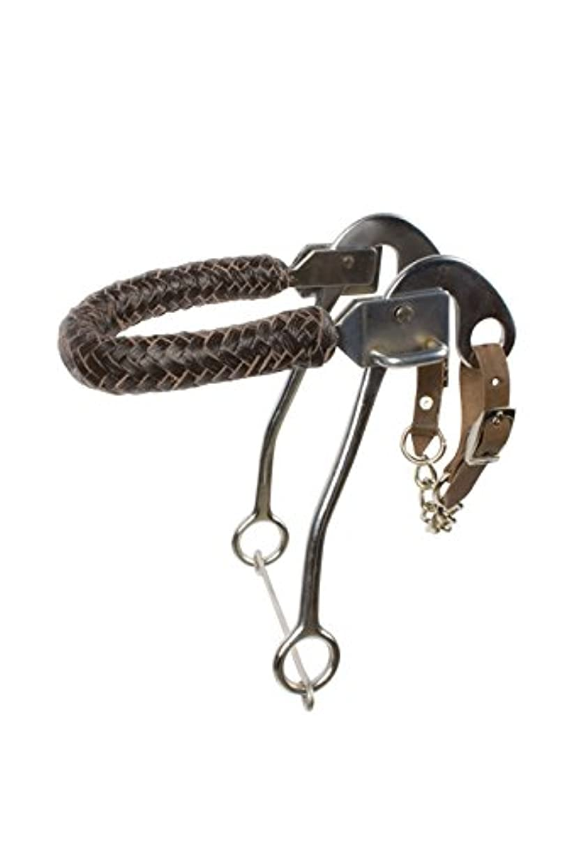 AceRugs English Western Leather Braided Nose Band BITLESS Hackamore Horse BIT Side Pull with Curb Chain