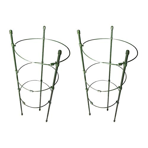 2X Garden Plant Support Climbing Plant 45cm 60cm Conical Trellis Supporter Frame Hot Style Kit