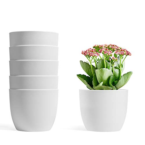 T4U 12CM Self Watering Planters Plastic White Set of 6, Modern Round Flower Pot Indoor Nursery Bonsai Plant Pot for Garden House Plants, Aloe, Herbs and More