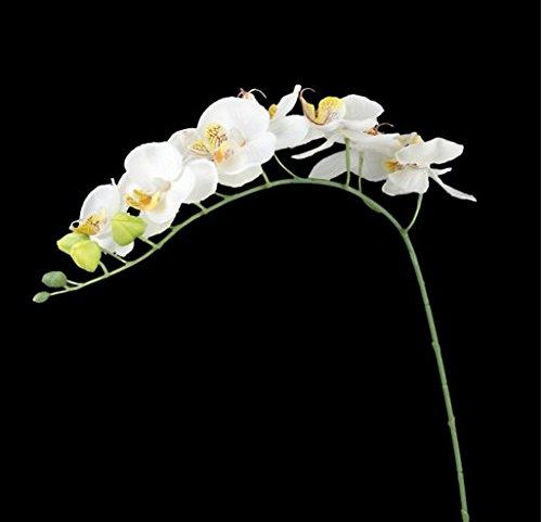 1 rama de 8 orquídeas artificiales para decoración interior de habitación, amarillo, 1